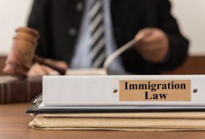 Immigration Law Folder